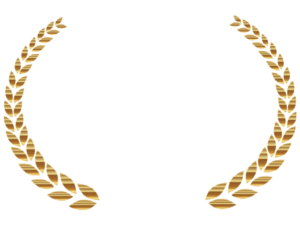 2020 Digital Health Award